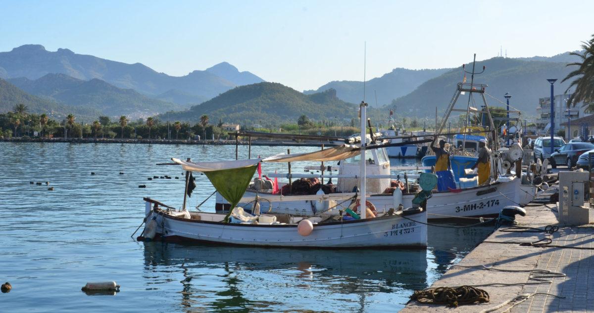 Andratx vissersbootjes